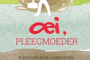 Anderszins Oei Pleegmoeder Cover webafb